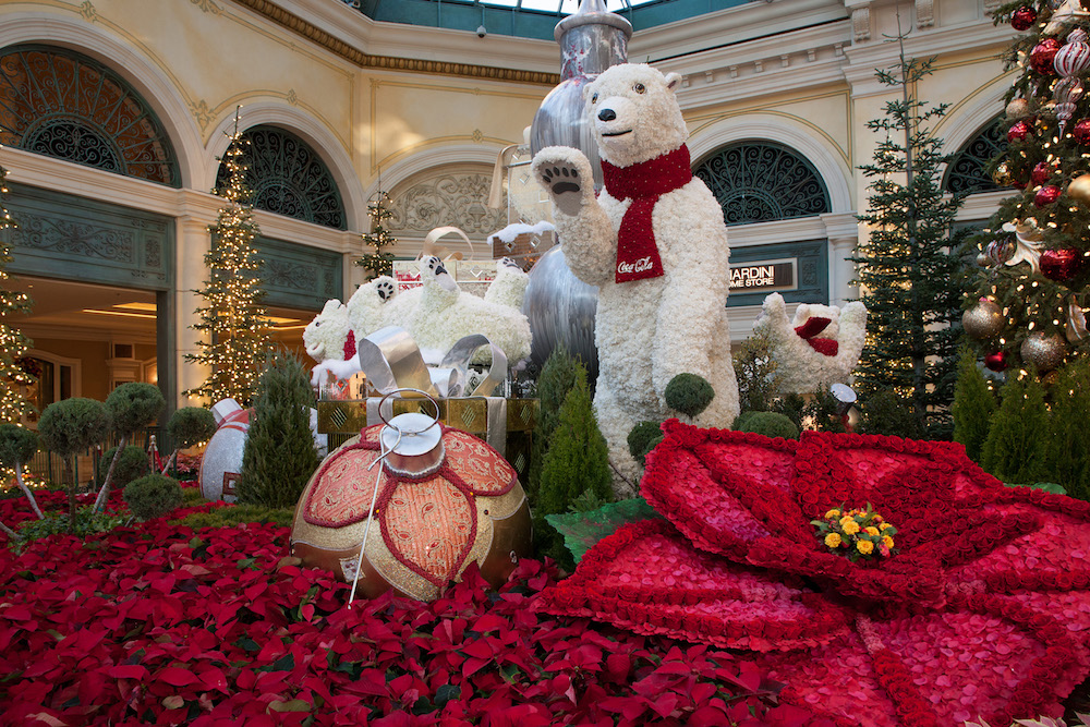 Bellagio Conservatory Winter Display 2020 - West Bed 02