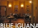 Looking Inside Blue Iguana Mexican Express