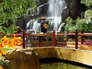 Mizumi Waterfall Seats