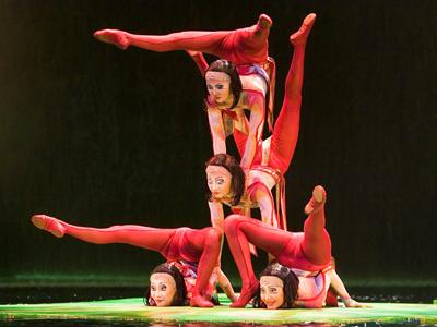 Is Cirque Du Soleil Ovo Kid Friendly