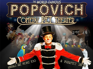 Popovich Pet Theater