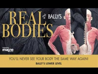 REAL BODIES at Bally's human anatomical exhibit