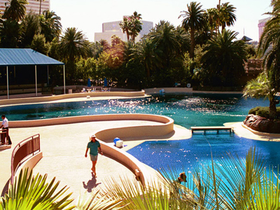 Mirage Secret Garden And Dolphin Habitat Reviews Garden Ftempo