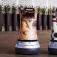 Vdara the latest to employ robots in Vegas