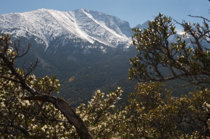Wheeler Peak with snow tipped mountains